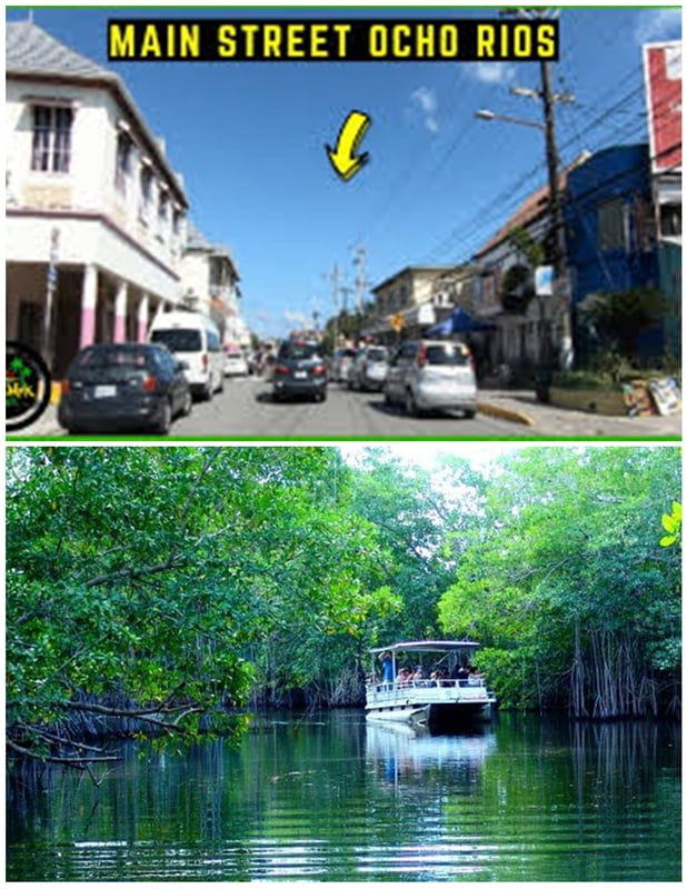 From Ocho Rios Main Street Area  -Black River St. Elizabeth (Round Trip)